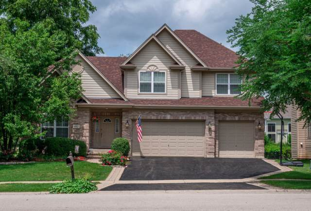 450 Pond View Lane, Bartlett, IL 60103 (MLS #11176732) :: Suburban Life Realty