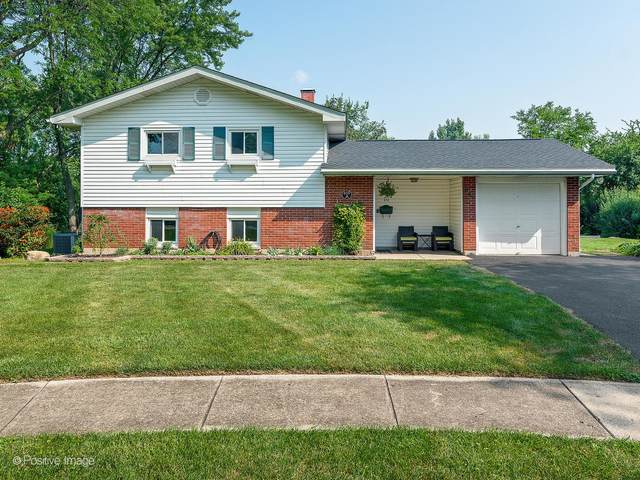 650 Audubon Street, Hoffman Estates, IL 60169 (MLS #11176867) :: Charles Rutenberg Realty