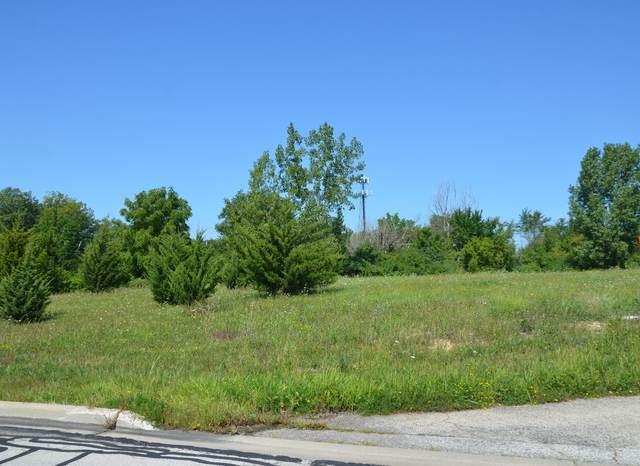 105 Oswalt Avenue, Batavia, IL 60510 (MLS #11176944) :: Suburban Life Realty