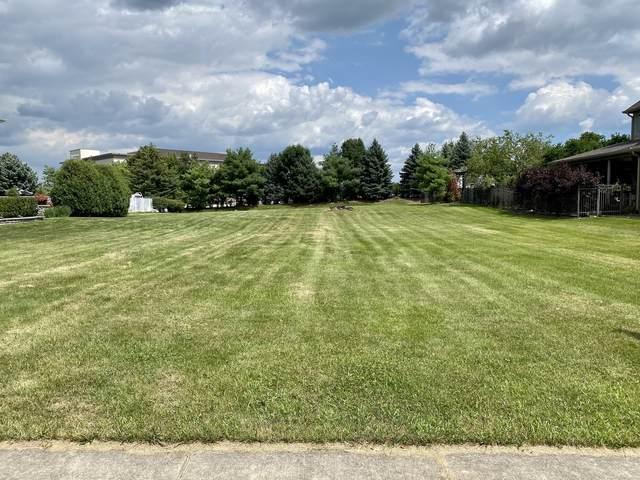 21195 Sage Brush Lane, Mokena, IL 60448 (MLS #11177028) :: The Dena Furlow Team - Keller Williams Realty