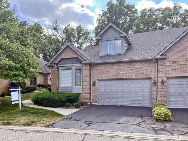 1219 Willowgate Lane, St. Charles, IL 60174 (MLS #11177776) :: Charles Rutenberg Realty