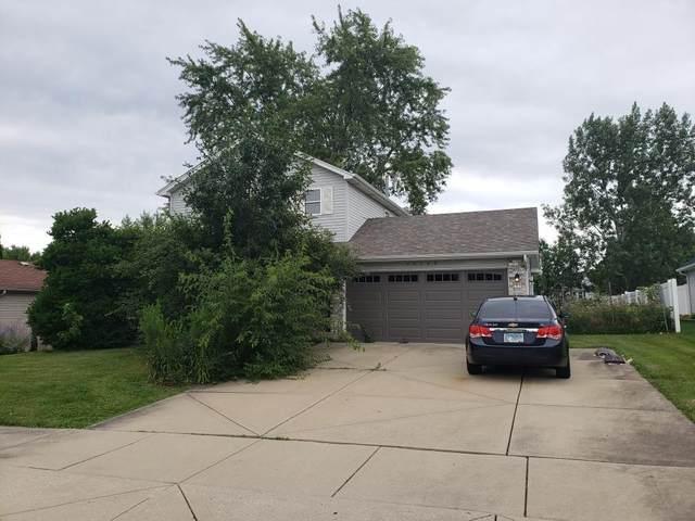 25709 S Linden Avenue, Monee, IL 60449 (MLS #11177939) :: Charles Rutenberg Realty
