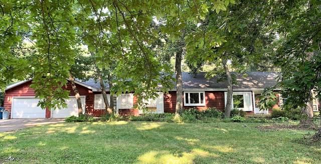 22740 Cottage Grove Avenue, Steger, IL 60475 (MLS #11178086) :: RE/MAX IMPACT