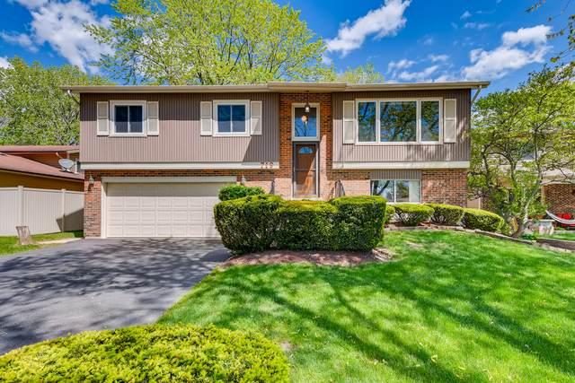 719 Rumple Lane, Addison, IL 60101 (MLS #11178363) :: O'Neil Property Group