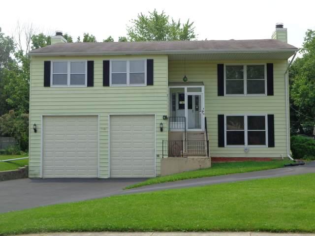 1161 Lehnertz Circle, Aurora, IL 60505 (MLS #11178557) :: Carolyn and Hillary Homes