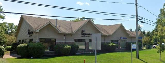 34498 N Old Walnut Circle, Gurnee, IL 60031 (MLS #11179110) :: Carolyn and Hillary Homes