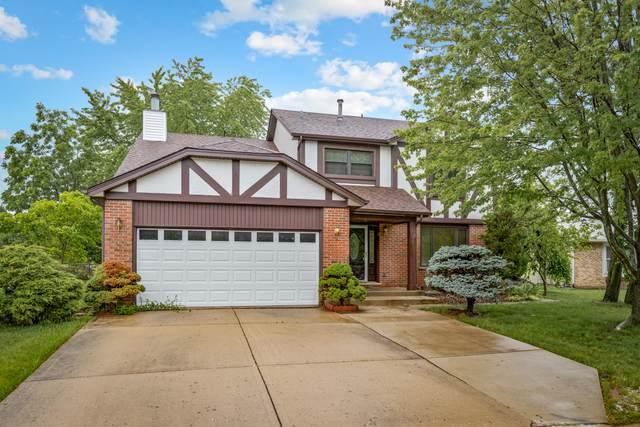 677 Cutter Lane, Elk Grove Village, IL 60007 (MLS #11179551) :: O'Neil Property Group