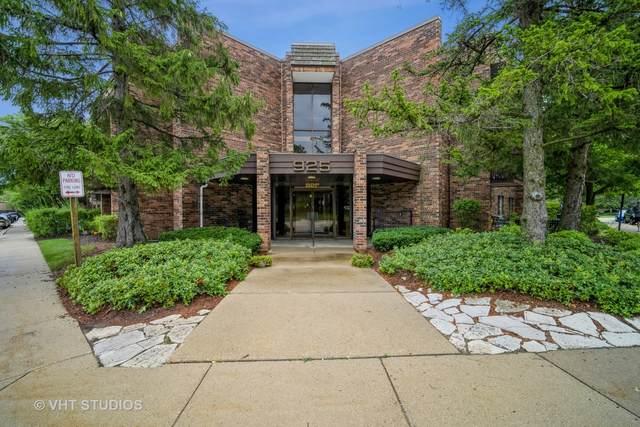 925 Spring Hill Drive #309, Northbrook, IL 60062 (MLS #11180052) :: John Lyons Real Estate
