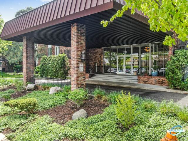1041 W Ogden Avenue 2-229, Naperville, IL 60563 (MLS #11180673) :: The Wexler Group at Keller Williams Preferred Realty