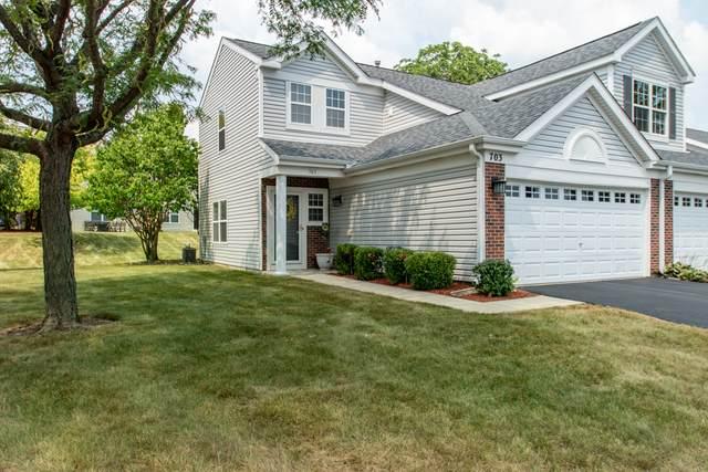 703 Baxter Court, Lake Villa, IL 60046 (MLS #11181410) :: John Lyons Real Estate
