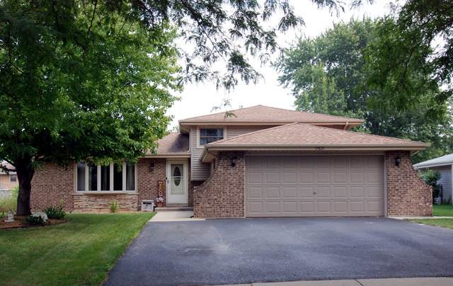 19821 S Schoolhouse Road, Mokena, IL 60448 (MLS #11183846) :: Littlefield Group