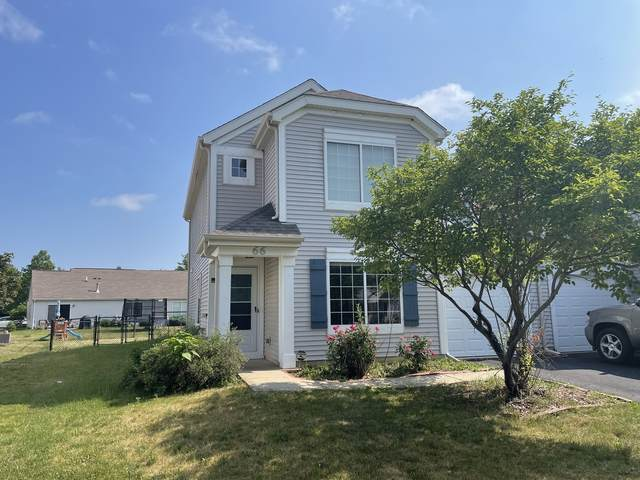 66 W Amberley Drive, Round Lake, IL 60073 (MLS #11184003) :: The Wexler Group at Keller Williams Preferred Realty