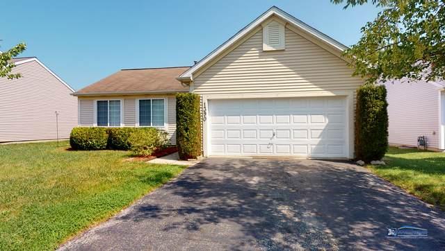 1390 Belle Haven Drive, Grayslake, IL 60030 (MLS #11184934) :: Littlefield Group