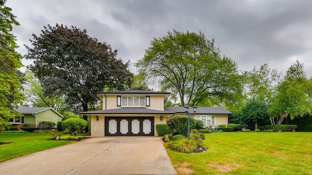 1415 Sunset Drive, Schaumburg, IL 60193 (MLS #11185212) :: The Wexler Group at Keller Williams Preferred Realty
