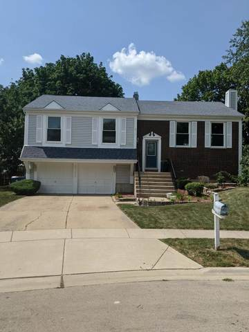 2120 Hitching Post Lane, Schaumburg, IL 60194 (MLS #11186939) :: The Wexler Group at Keller Williams Preferred Realty