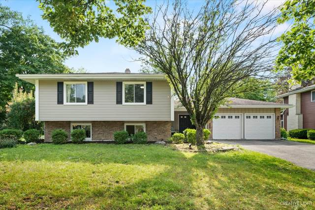 6552 Midhurst Road, Downers Grove, IL 60516 (MLS #11187406) :: The Wexler Group at Keller Williams Preferred Realty