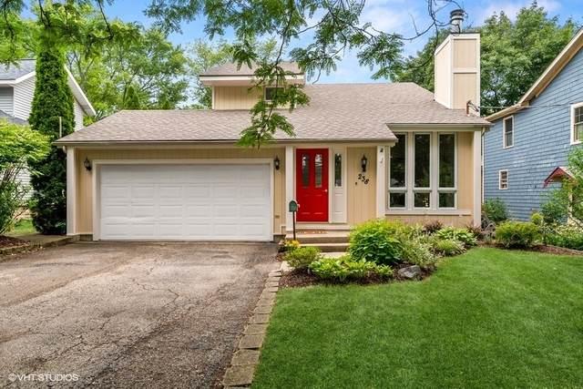 238 Harding Street, Grayslake, IL 60030 (MLS #11187636) :: The Wexler Group at Keller Williams Preferred Realty