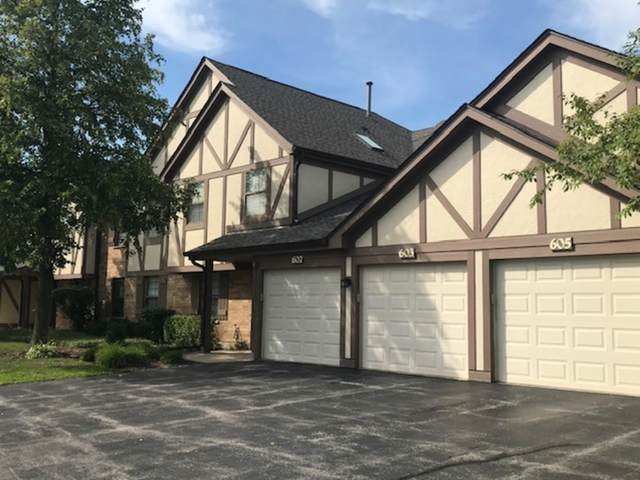 603 Catherine Court #603, Wood Dale, IL 60191 (MLS #11189594) :: The Wexler Group at Keller Williams Preferred Realty