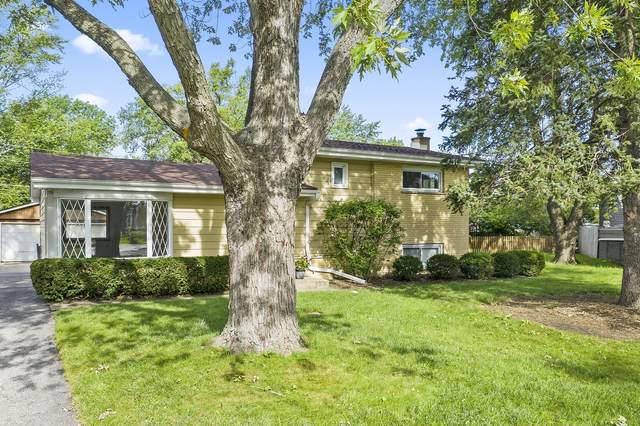 712 E Holly Court, Mount Prospect, IL 60056 (MLS #11189750) :: John Lyons Real Estate