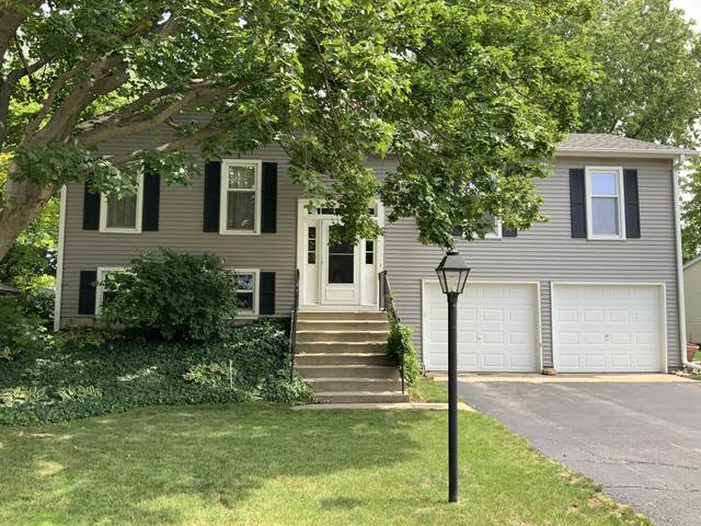 43 Essex Lane, Cary, IL 60013 (MLS #11190239) :: The Wexler Group at Keller Williams Preferred Realty