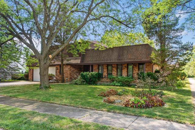3843 Lizette Lane, Glenview, IL 60026 (MLS #11190750) :: The Wexler Group at Keller Williams Preferred Realty