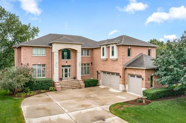 433 Pleasant Drive, Schaumburg, IL 60193 (MLS #11192424) :: John Lyons Real Estate