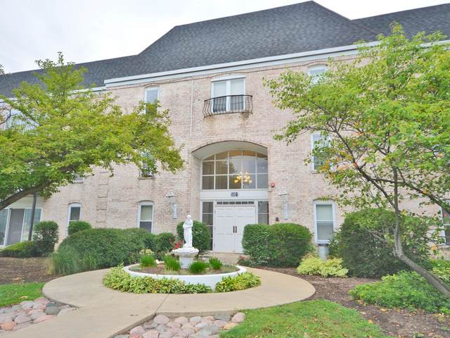 5001 Carriageway Drive A108, Rolling Meadows, IL 60008 (MLS #11192625) :: Littlefield Group