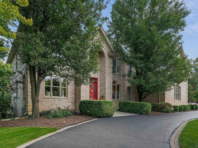 26552 Southgate Trail, Port Barrington, IL 60010 (MLS #11193231) :: Ani Real Estate