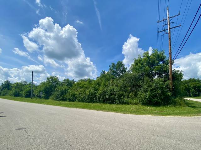 111 Butternut Drive, Crystal Lake, IL 60014 (MLS #11196103) :: Littlefield Group