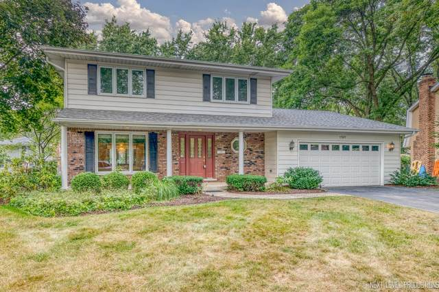 1521 Chat Court, Naperville, IL 60565 (MLS #11196144) :: Littlefield Group