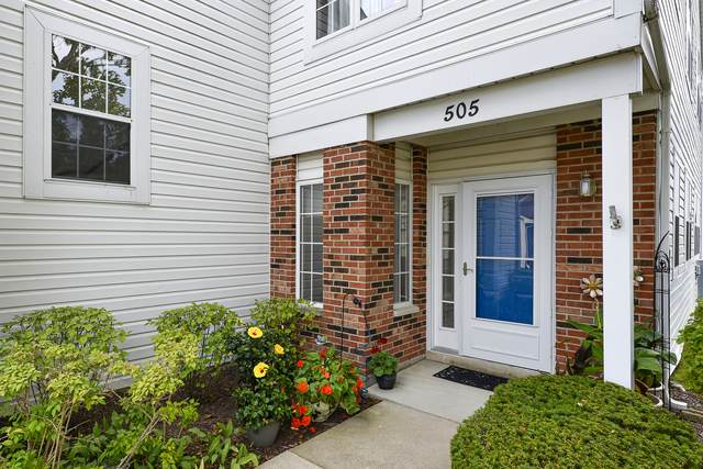 505 W Parkside Drive C2, Palatine, IL 60067 (MLS #11199005) :: Littlefield Group
