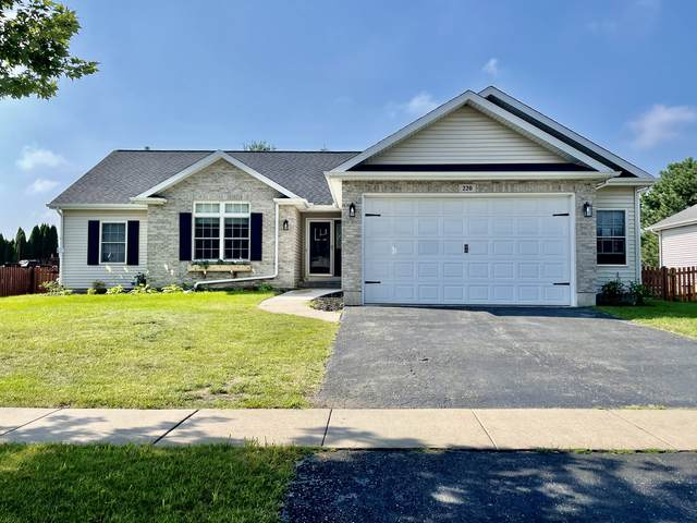 220 E Maplewood Drive, Sycamore, IL 60178 (MLS #11199498) :: Littlefield Group