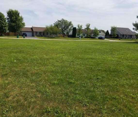 405 S Sandra Street, Kingston, IL 60145 (MLS #11200258) :: The Wexler Group at Keller Williams Preferred Realty