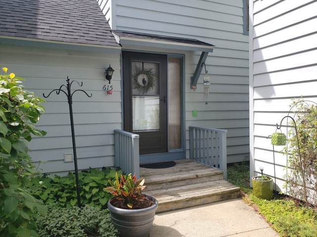 615 Dunham Road, Gurnee, IL 60031 (MLS #11201383) :: John Lyons Real Estate