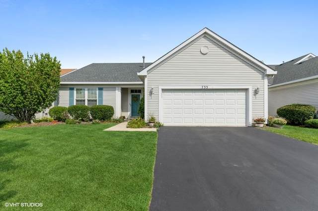 733 Holland Lane, Romeoville, IL 60446 (MLS #11202317) :: John Lyons Real Estate