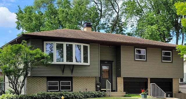 1115 E Alder Lane E, Mount Prospect, IL 60056 (MLS #11202442) :: John Lyons Real Estate