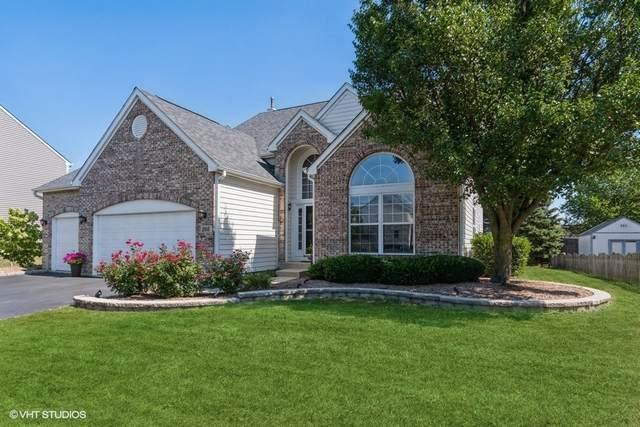 205 Burton Drive, Bartlett, IL 60103 (MLS #11203075) :: Helen Oliveri Real Estate