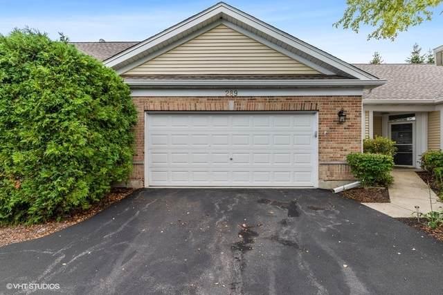 289 Enfield Lane #0, Grayslake, IL 60030 (MLS #11203197) :: Jacqui Miller Homes