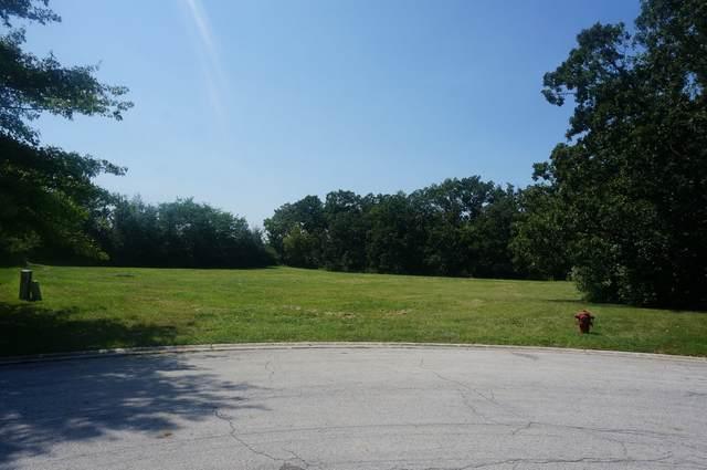 340 S Walnut Ridge Court, Frankfort, IL 60423 (MLS #11203224) :: John Lyons Real Estate