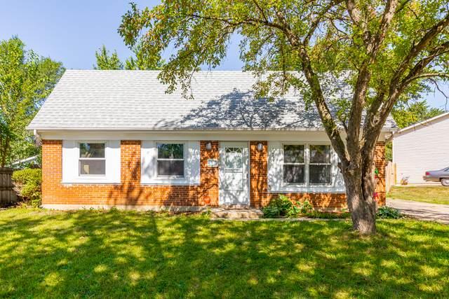 165 Garden Drive, Bolingbrook, IL 60440 (MLS #11203520) :: John Lyons Real Estate