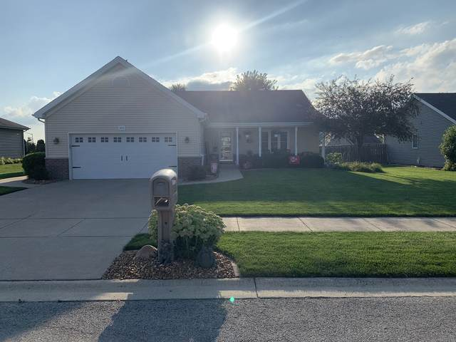 959 Louise Drive, Momence, IL 60954 (MLS #11203669) :: Suburban Life Realty