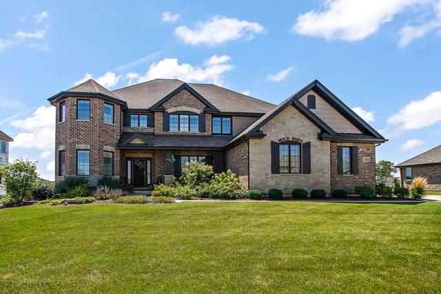 8618 Stone Creek Boulevard, Frankfort, IL 60423 (MLS #11203800) :: John Lyons Real Estate