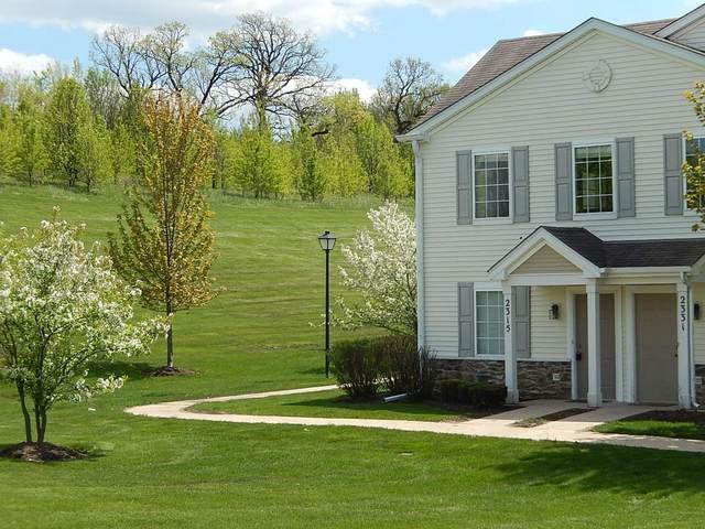 2315 Silverstone Drive #2315, Carpentersville, IL 60110 (MLS #11204131) :: John Lyons Real Estate