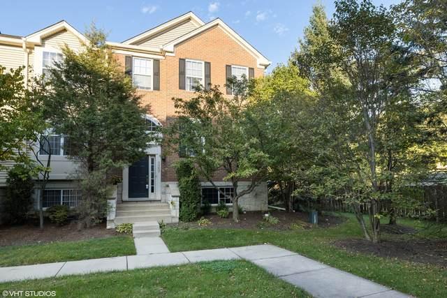 129 Patrick Avenue, Willow Springs, IL 60480 (MLS #11204683) :: John Lyons Real Estate