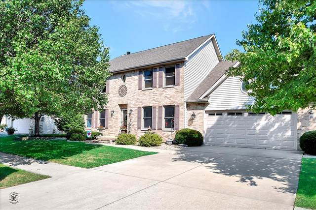 500 Brian Drive, Manteno, IL 60950 (MLS #11204689) :: The Wexler Group at Keller Williams Preferred Realty