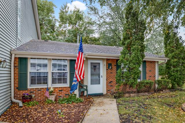 329 Georgetown Court A, Bloomingdale, IL 60108 (MLS #11205075) :: Littlefield Group