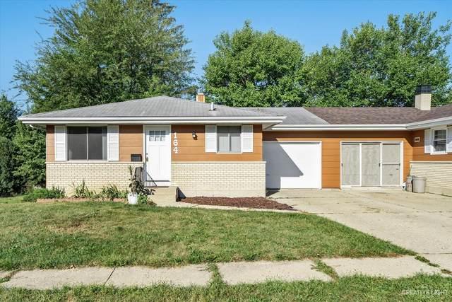 164 Pleasant Drive #164, South Elgin, IL 60177 (MLS #11205221) :: Touchstone Group