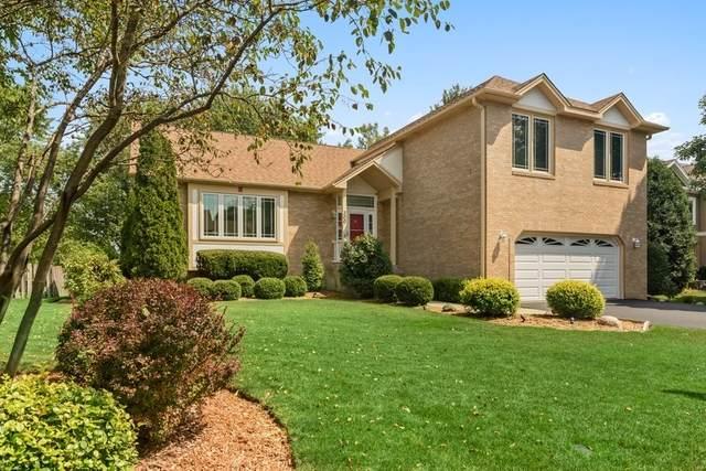 300 Hidden Creek Road, Lake Zurich, IL 60047 (MLS #11205268) :: John Lyons Real Estate