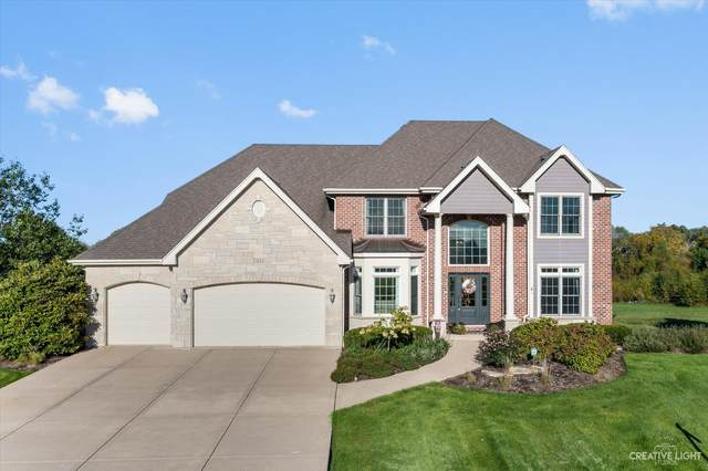 7433 Thornhill Court, Yorkville, IL 60560 (MLS #11205488) :: Suburban Life Realty