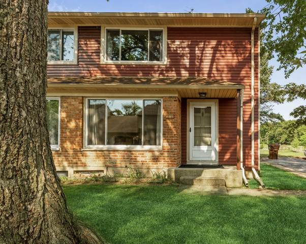 22 Michael Road, Park Forest, IL 60466 (MLS #11205612) :: Littlefield Group